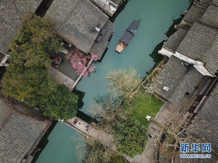 (环境)(4)乌镇春晓