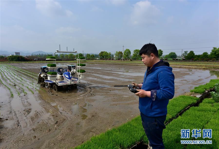 #(社会)(1)智能无人驾驶插秧机助力农事