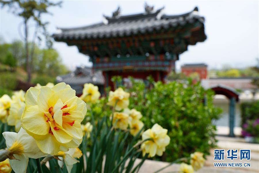 (国际·北京世园会)(1)世界园林巡礼——韩国顺天湾国家园林