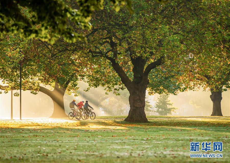 (國際·編輯連線)(1)世界環境日:綠色城市 綠色生活