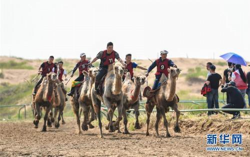 (社会)(1)欢聚沙漠那达慕