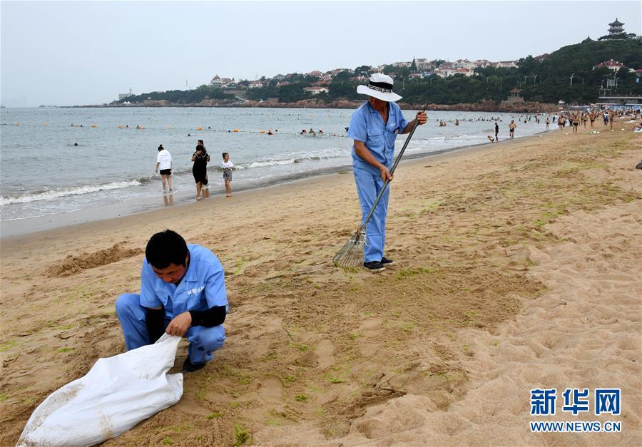 (社会)(3)青岛:清理海滩迎客来