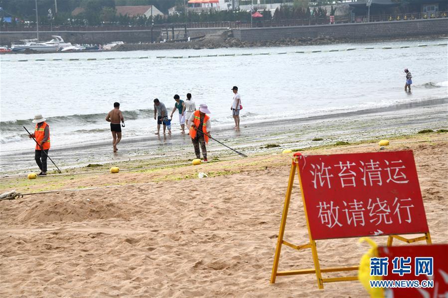 (社会)(4)青岛:清理海滩迎客来