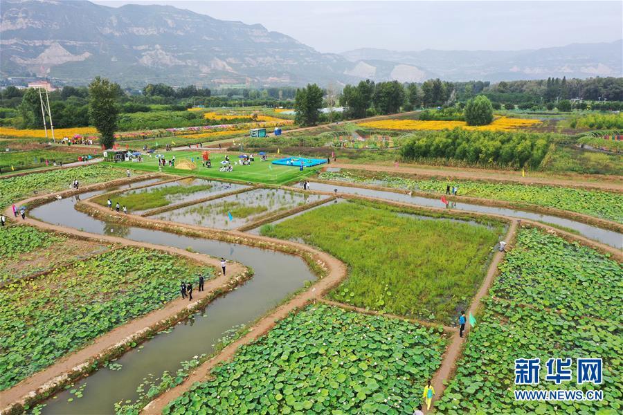 (经济)(3)发展美丽经济 助推乡村振兴