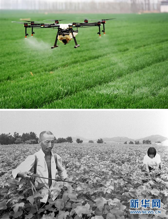 (壮丽70年·奋斗新时代)(4)在希望的田野上