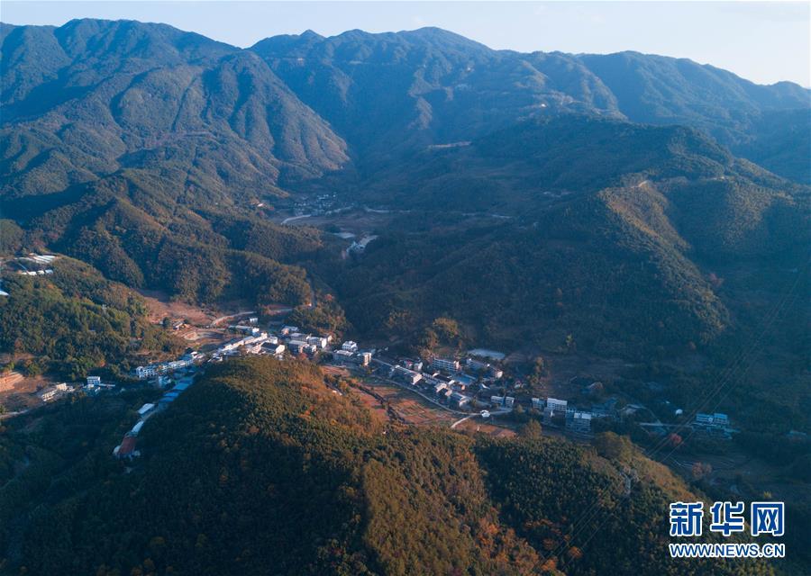 (美丽中国)(1)福建桔林乡:江畔层林尽染