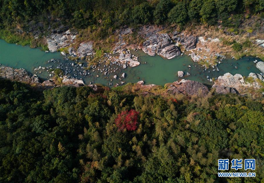 (美丽中国)(3)福建桔林乡:江畔层林尽染