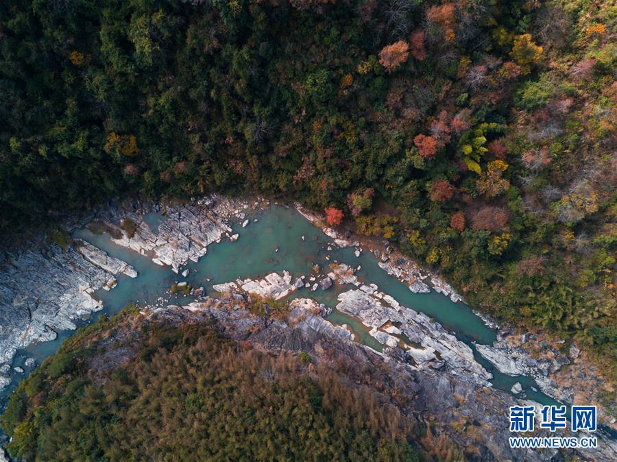 (美丽中国)(6)福建桔林乡:江畔层林尽染