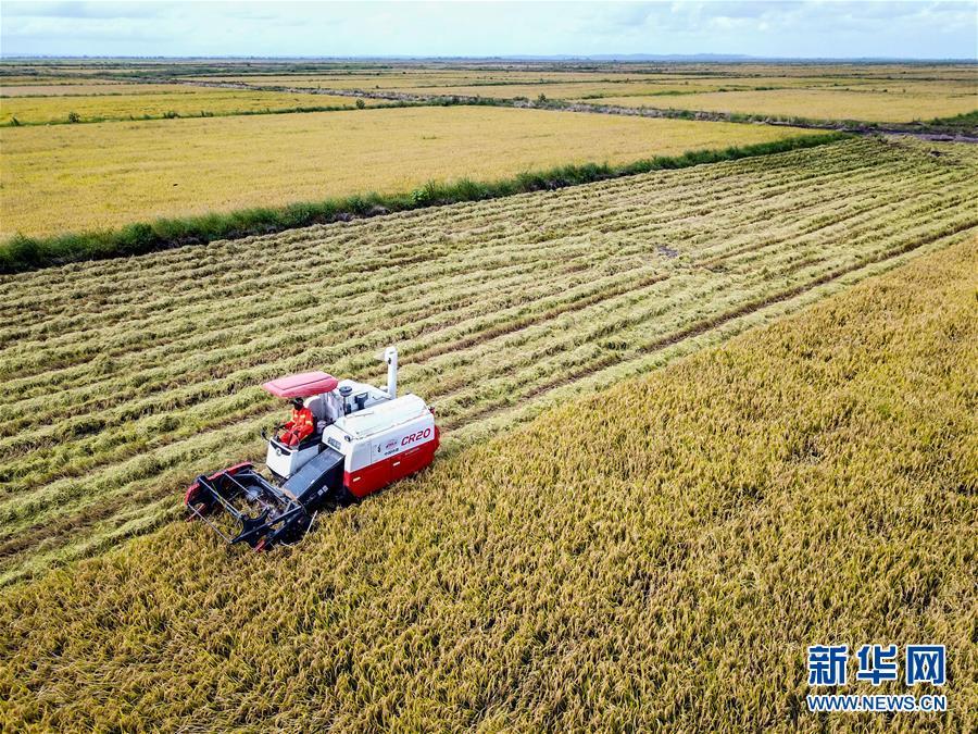 (国际)(1)中国农业技术帮助莫桑比克改善粮食问题
