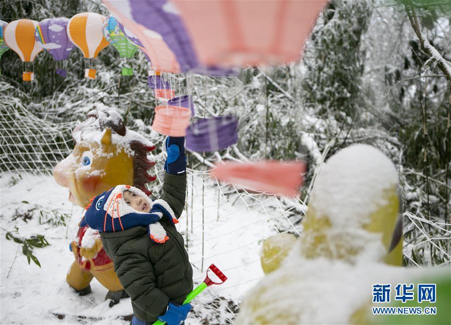 (社会)(1)冰雪节童趣
