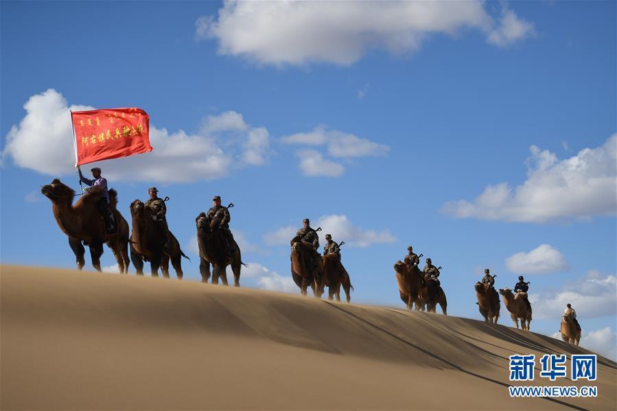 (社会)(1)大漠驼兵