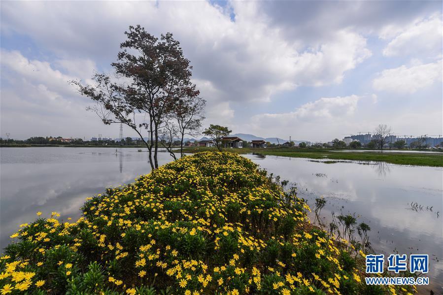 """(环境)(1)浙江富阳:城市""""生态绿肺""""亮相"""