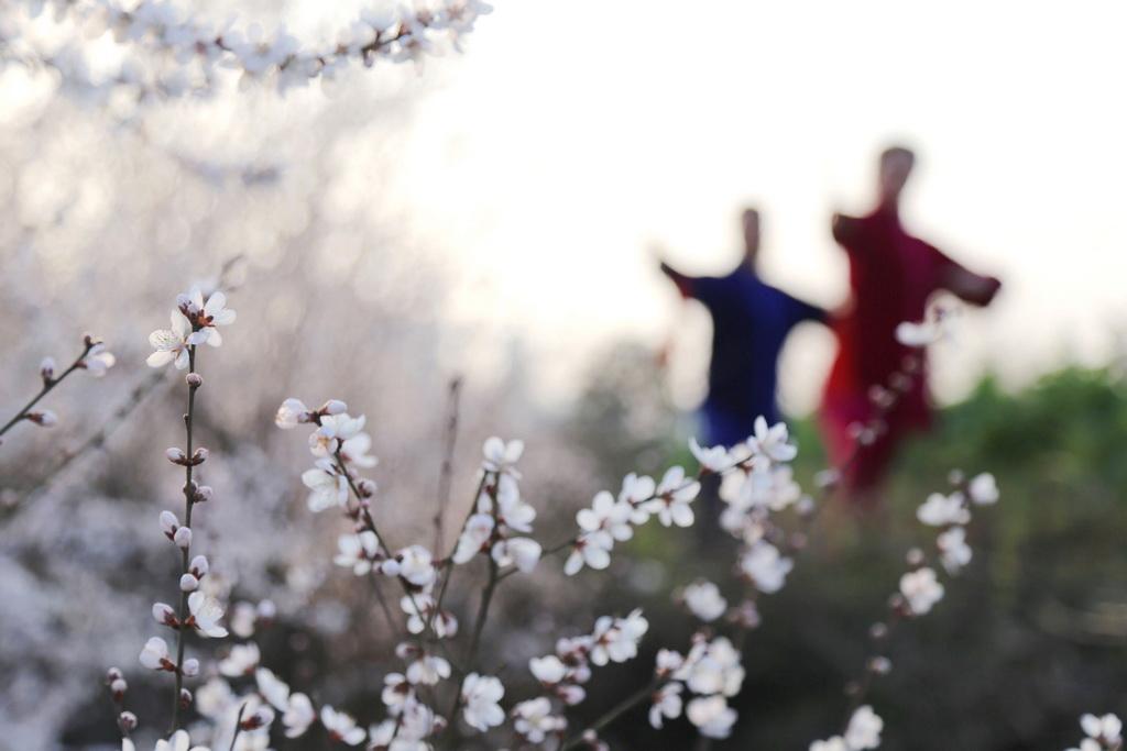 2月19日,武术爱好者在湖北省十堰市郧阳区城郊的一处果园内练剑。新华社发(曹忠宏 摄)