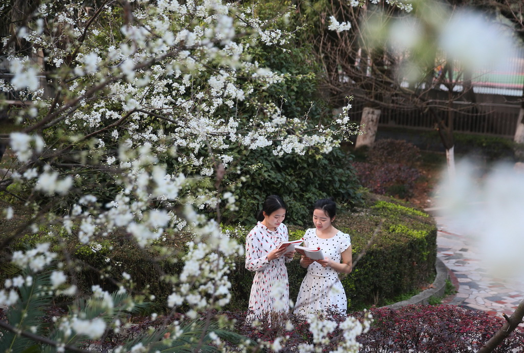 2月20日,湖南衡阳南华大学两名学生在校园里晨读。 新华社发(曹正平 摄)