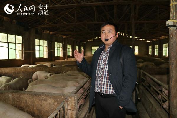 郑培坤介绍自己的养猪经验。周雅萌 摄