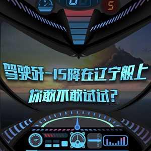 超真实的飞机驾驶游戏来啦!