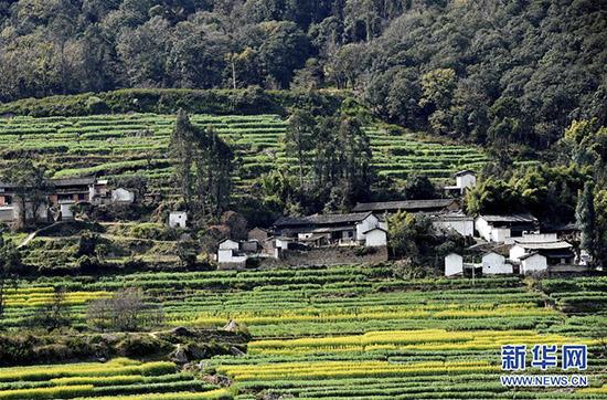 2个月份的美景-时值立春,云南省禄劝彝族苗族自治县翠华镇绿意盎然,景色秀美,一