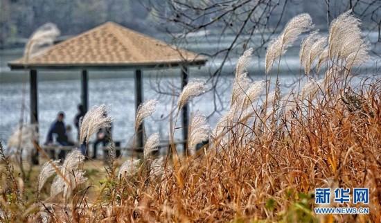 (美丽中国)(3)延庆生态美 秋色更宜人
