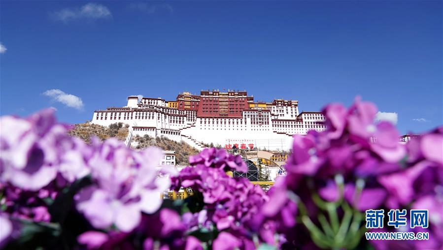 """(服务)(1)西藏实行特殊优惠力推""""冬游西藏"""" 布达拉宫等景区免费开放"""