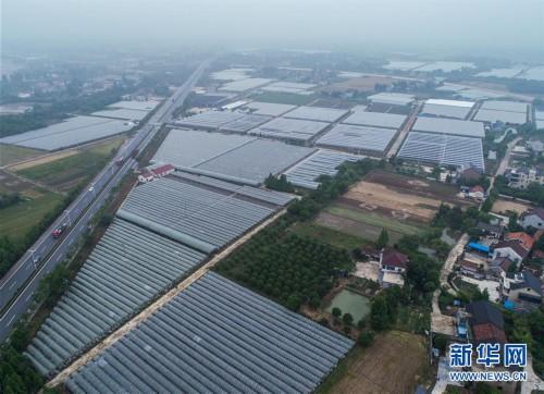 """(经济)(2)""""农园新景""""助力乡村旅游产业"""