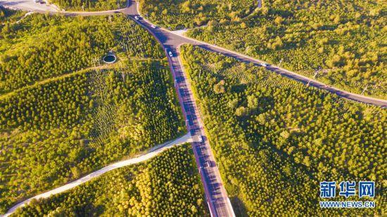(环境)(4)内蒙古乌兰察布:打造山水生态景观 提高城市宜居度