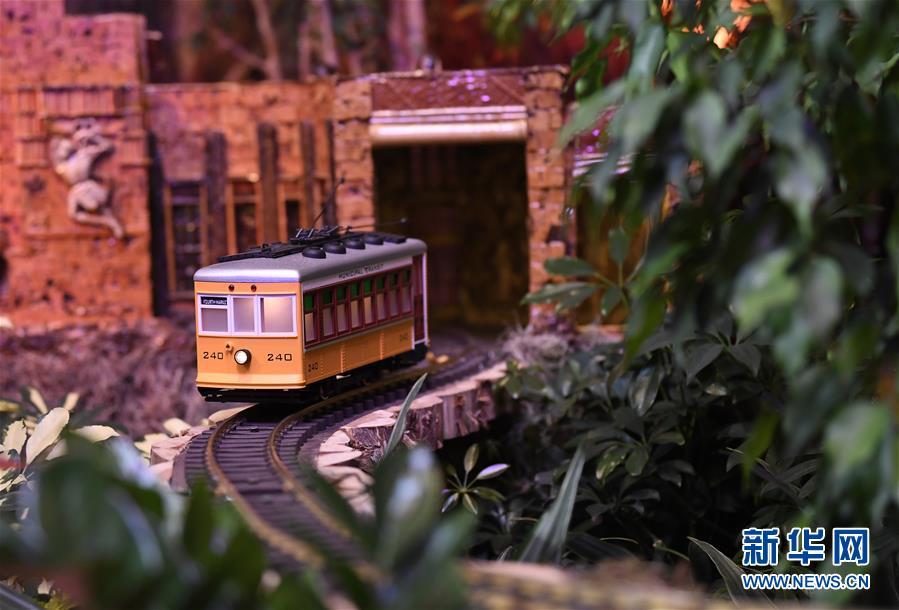 (国际)(1)华盛顿举行迷你火车展览