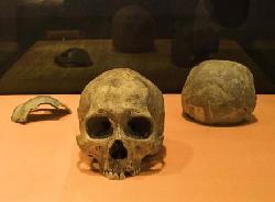 """(图文互动)(2)最新研究:我国最北的早期人类""""扎赉诺尔人""""年代距今1万余年"""