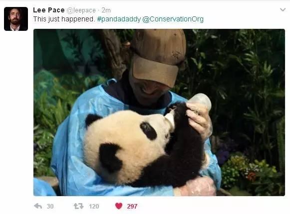 给小团子喂奶的佩佩脸上洋溢着幸福的笑容……-熊猫 宝宝 回国,美国