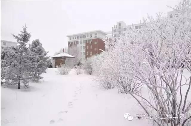日新园 齐齐哈尔工程学院-冬季校园,谁最美 全国高校冬季校园风光展