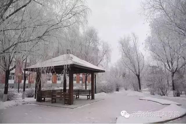 中和亭 齐齐哈尔工程学院-冬季校园,谁最美 全国高校冬季校园风光展