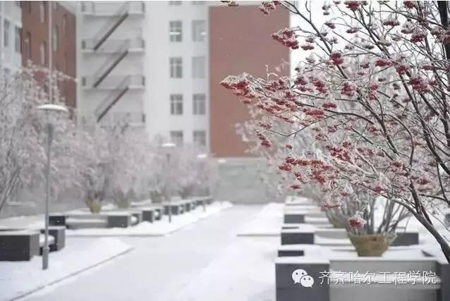 悟谛广场 齐齐哈尔工程学院-冬季校园,谁最美 全国高校冬季校园风光