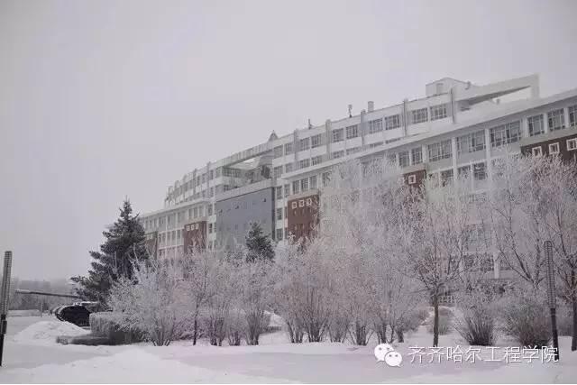 图书馆 齐齐哈尔工程学院-冬季校园,谁最美 全国高校冬季校园风光展