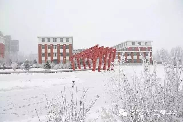 梦蝶钢塑 齐齐哈尔工程学院-冬季校园,谁最美 全国高校冬季校园风光