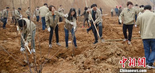 """河北铁矿转型发展的""""绿色样本"""":未来矿山变身游览区"""