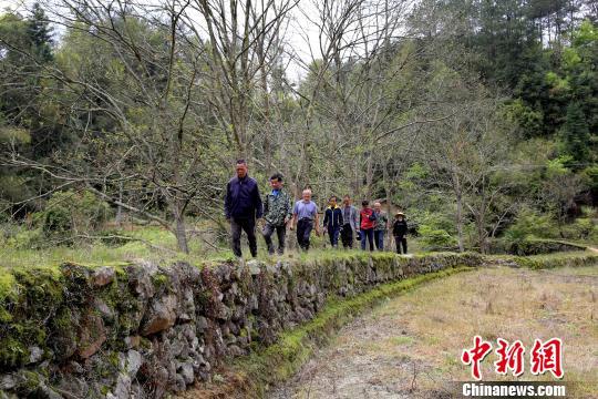 江西省修水县文物工作者日前在宁州镇范塅村发现修建于清朝康熙年间的客家河堤。 黄一魏 摄