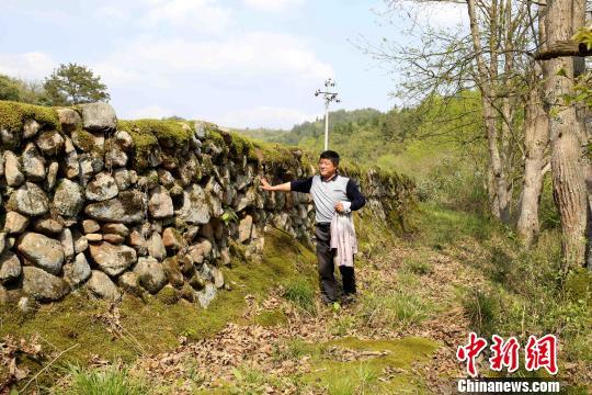 河堤长约400米,顶部宽度在60公分至100公分之间,高度约两米,由石料砌筑而成。 黄一魏 摄
