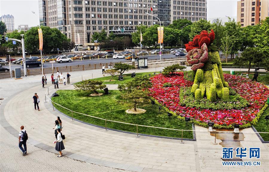 (社会)(2)北京:花坛迎盛会