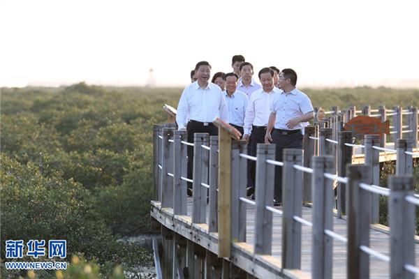 习近平厚植绿水青山 世界点赞美丽中国