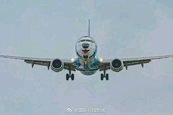 俄罗斯哈士奇飞机要上天啦!