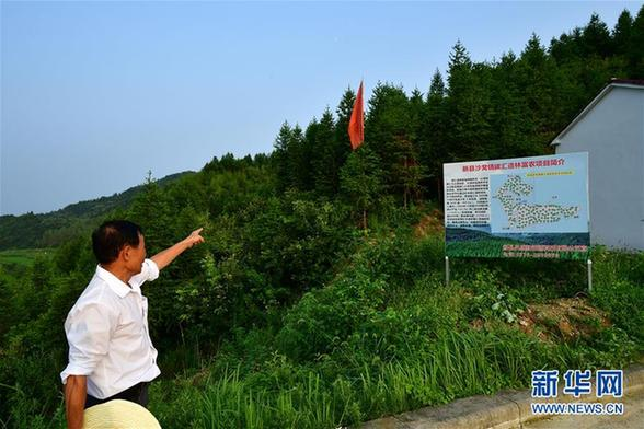8月3日,在沙窝镇汪冲村,一位村民在介绍沙窝镇碳汇造林富农项目。 河南省新县是典型的山区林业县,目前全县植被覆盖率95%以上,其中生态公益林99.7万亩,占林地总面积的一半以上。 目前,新县抓住国家生态扶贫规划实施机遇,积极申报碳汇造林富农项目,拓宽贫困群众增收渠道。以河南省少有的森林碳汇交易项目新县沙窝镇碳汇造林富农项目为例,2017年该项目共涉及林地5430亩,年均碳减排量约6600余吨,年可实现收入20多万元,200余名贫困群众从中受益。 新华社记者 冯大鹏 摄 来源:新华社