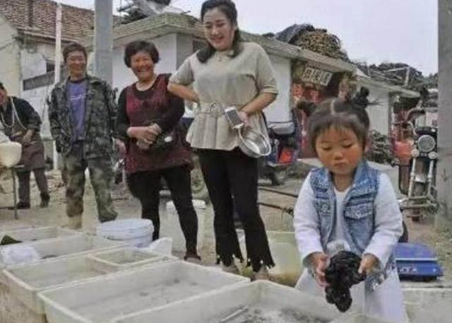 """四岁女孩集市卖""""毛""""100一斤遭疯抢"""