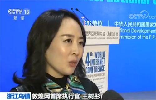 敦煌网首席执行官王树彤