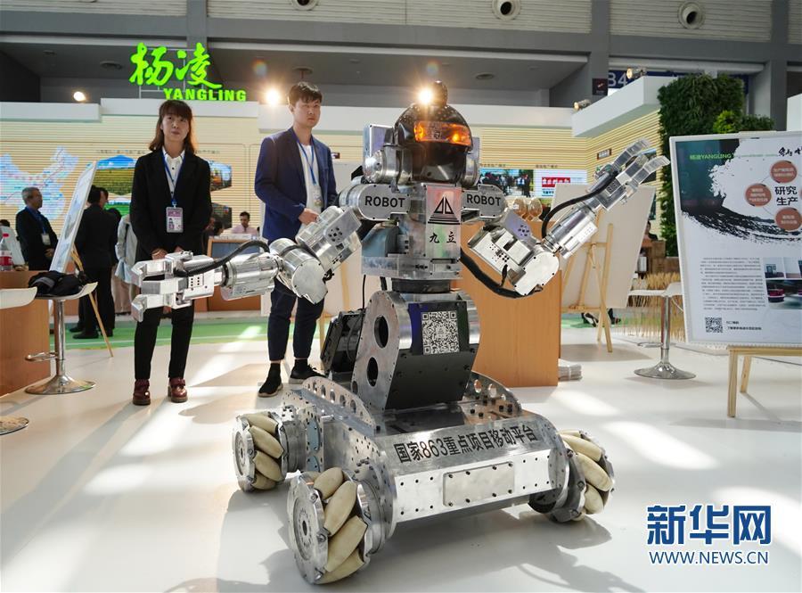 """(科技)(4)智能机器人""""闪耀""""丝博会"""