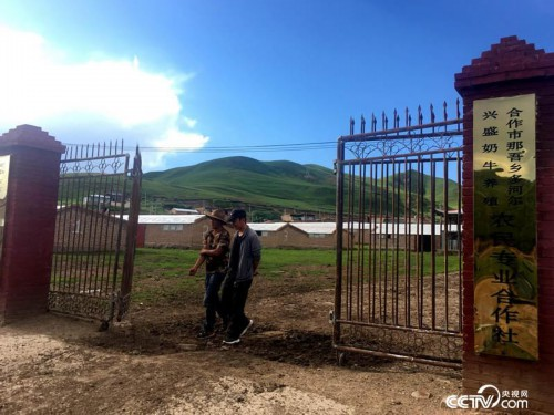 更知地自然村的多河尔兴盛奶牛养殖农民专业合作社