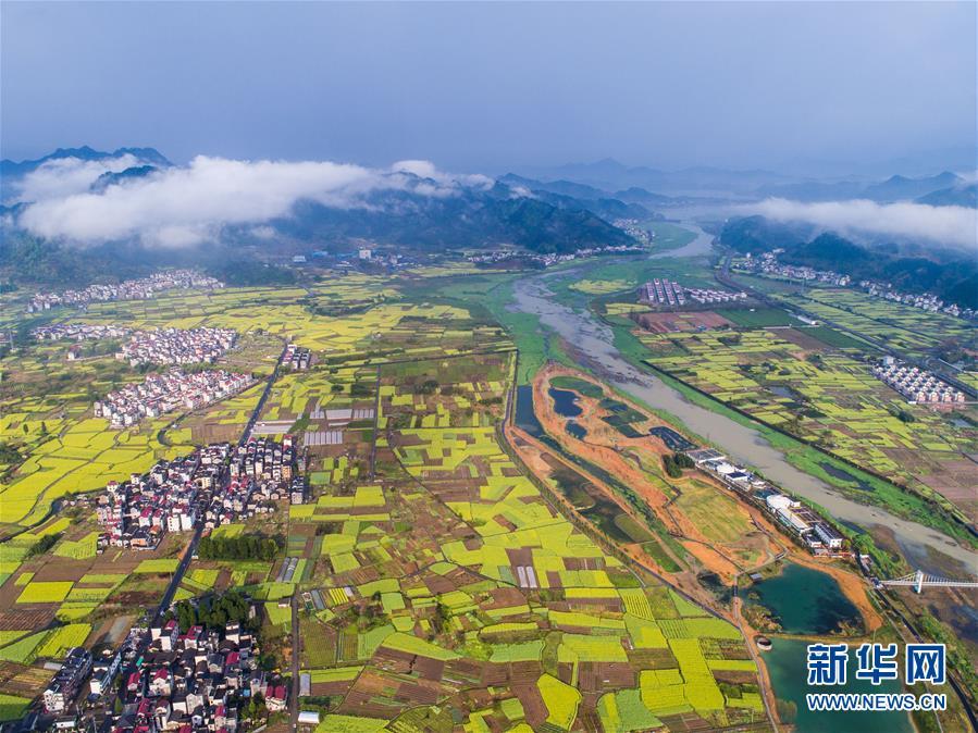 """(图文互动)(1)建设好生态宜居的美丽乡村——从""""千万工程""""看习近平生态文明思想的生动实践和世界回响"""
