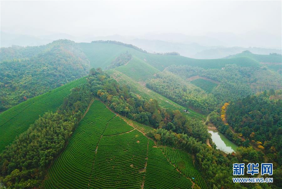 """(图文互动)(5)建设好生态宜居的美丽乡村——从""""千万工程""""看习近平生态文明思想的生动实践和世界回响"""