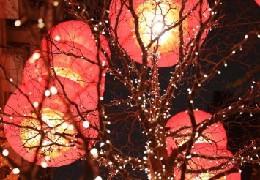 (社会)(4)夜游灯火吉祥红