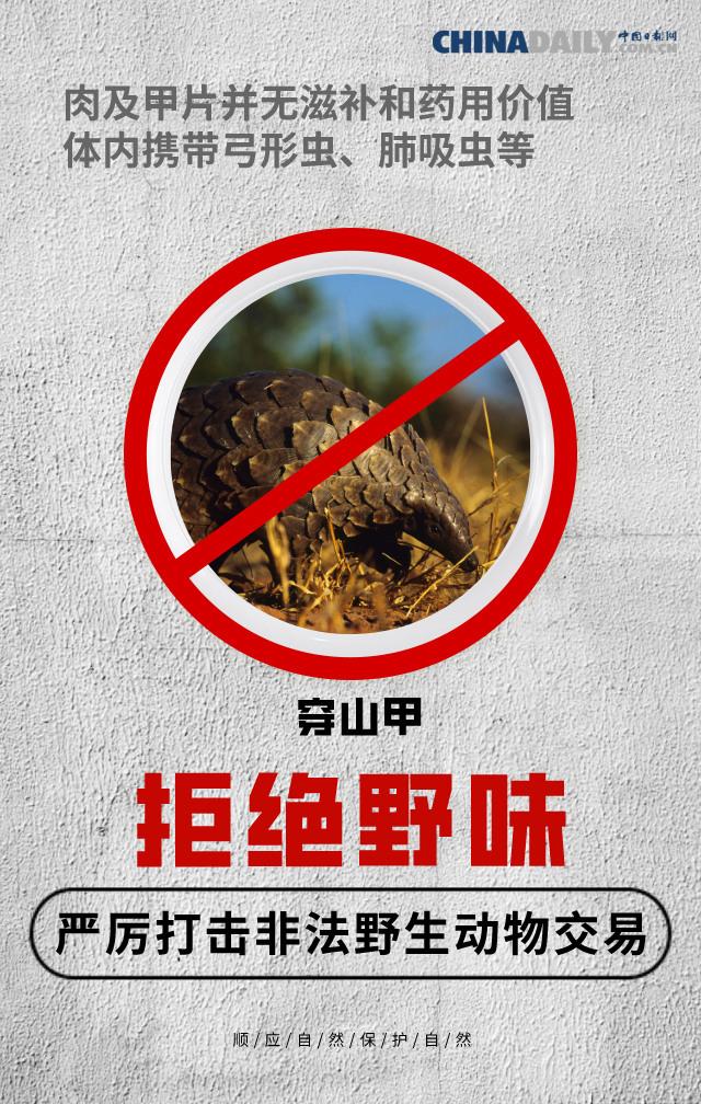 【海报】全面禁止非法野生动物交易 刻不容缓