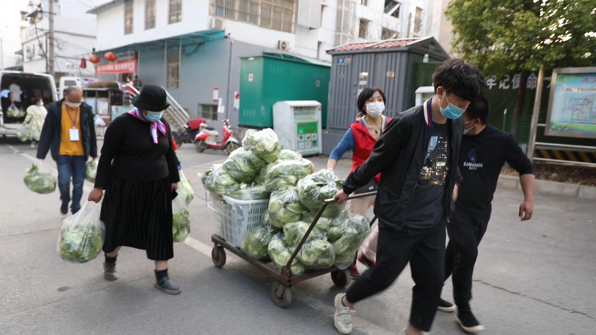 3月中旬,从来没下过地的楼威辰与其他志愿者一起去郊区农场摘菜,连去了6天,摘了6000份左右蔬菜,送给十几个社区的贫困人口。