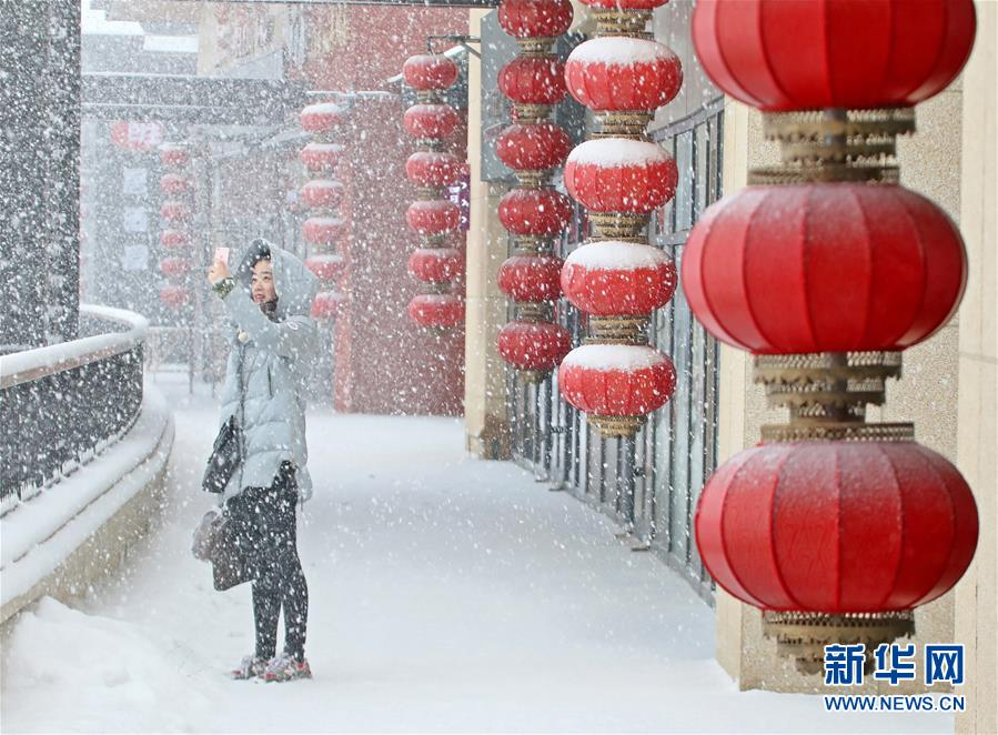 #(环境)(1)山东半岛迎春雪